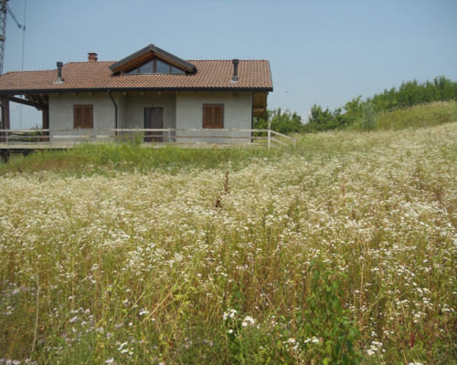 Villa nuova ad Alfiano Natta da rifinire