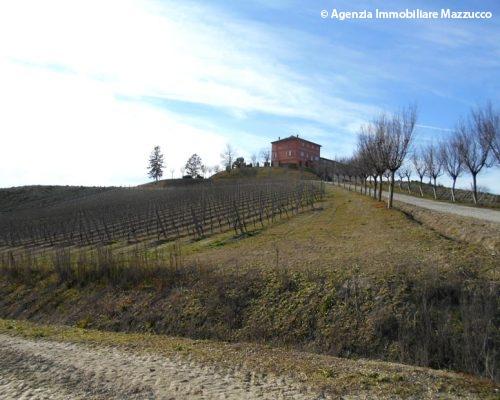 Azienda agricola ad Ozzano Monferrato